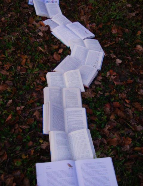 camino de libros estatutos comunidad
