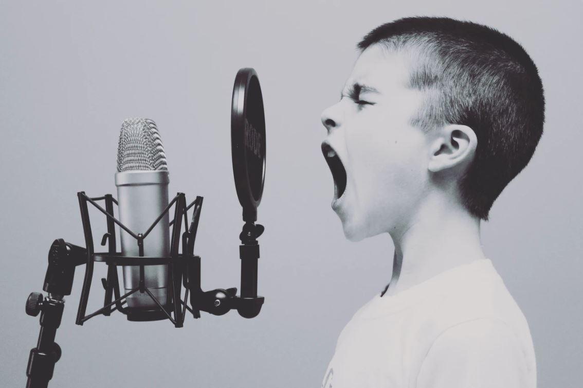 C:\Users\david\AppData\Local\Microsoft\Windows\INetCache\Content.Word\Vecino Ruidosos niño gritando.jpg